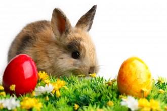 Velikonoční provozní doba